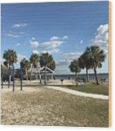 Port Richey, Florida Wood Print