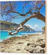 Porte D Enfer, Guadeloupe Wood Print