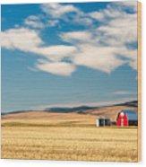 Prairie Red Wood Print