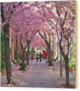 Prettiest Street In Philadelphia Wood Print