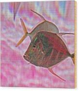 Pretty Fishy, Fish, 6, Multi-color, Pink Backgroun7 Wood Print