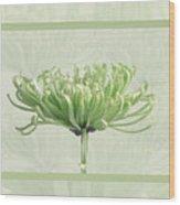 Pretty In Green Wood Print