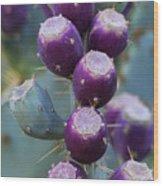 Prickly Pear Fruit  Wood Print