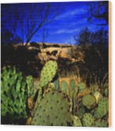 Prickly Pears Enchanted Rock Texas Wood Print