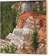 Providence Canyon Wood Print