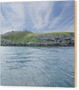Puffin Island Wood Print