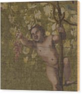 Putto Gathering Grapes Wood Print
