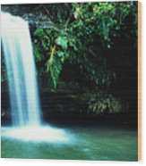 Quebrada Juan Diego Waterfall Wood Print