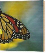Queen Monarch Wood Print