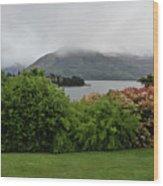 Queenstown, New Zealand Wood Print