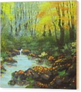 Quiet  Time And  Place Wood Print