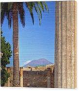Quiet Vesuvius Wood Print
