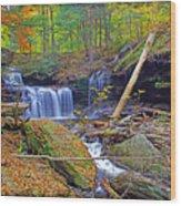 R B Ricketts Falls In Autumn Wood Print