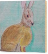 Rabbit Illustration Wood Print