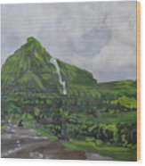 Visapur Fort Wood Print
