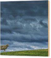 Rain Storm Ewe And Lamb Wood Print