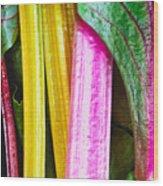 Rainbow Chard Wood Print