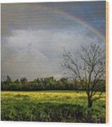 Rainbow Fields Wood Print