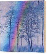 Rainbow Magic Wood Print