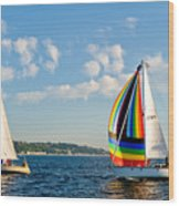 Rainbow Sails Wood Print
