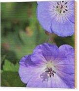 Raindrops On Purple Wood Print