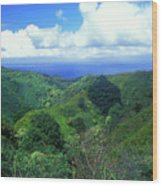 Rainforest Near Hana Wood Print