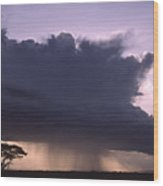 Rainstorm At Amboseli Wood Print