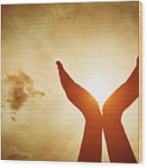 Raised Hands Catching Sun On Sunset Sky. Concept Of Spirituality, Wellbeing, Positive Energy Wood Print