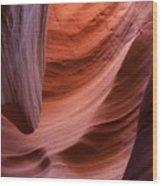 Rattlesnake Canyon 7811 Wood Print