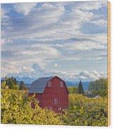 Red Barn And Mt Hood Wood Print