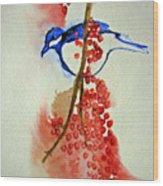 Red Berry Blue Bird Wood Print