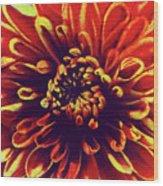 Red Flower 92 Wood Print
