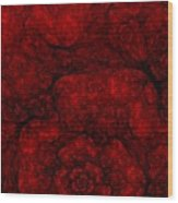 Red Fractal 051910 Wood Print