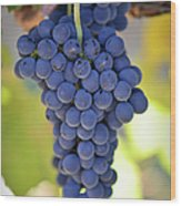 Red Grapes Wood Print