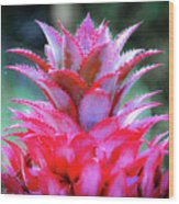 Red Pineapple Wood Print