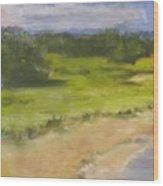 Red River Marsh Wood Print