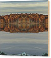 Mirrored Panoramic, Reflecting Fall  From The Banks Of  Bishop Pond Wood Print