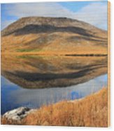 Reflection Of The Connemara Mountains In A Blue Lake Ireland Wood Print