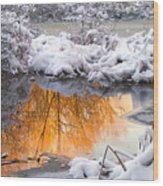 Reflections in Melting Snow Wood Print
