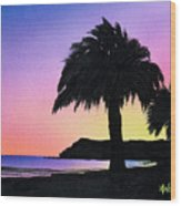 Refugio Point 1 Wood Print