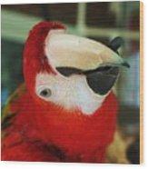 Ringo The Ruby Macaw Wood Print