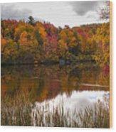 Ripshin Lake Wood Print
