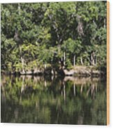 River In The Jungle Wood Print