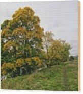 River Swale Wood Print
