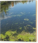 River Water Pollution Wood Print