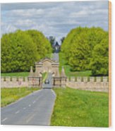 Road To Burghley House Wood Print