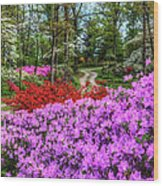 Road With Flowers Wood Print