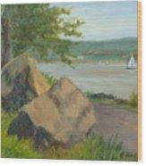 Rocks Along The Nyack Trail Wood Print