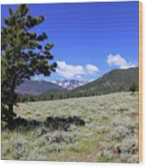 Rocky Mountain Foothills Wood Print