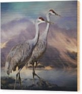 Rocky Mountain Sandhill Cranes Wood Print